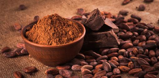 Cacao, elisir di lunga vita