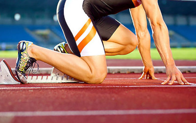 Sport e microbiota, le ultime evidenze sul ruolo degli integratori