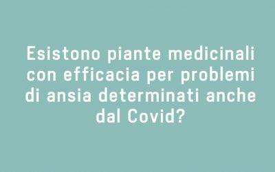 Esistono piante medicinali con efficacia per problemi di ansia determinati anche dal COVID?